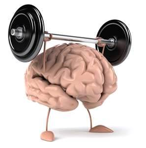 Weight Lifting Brain